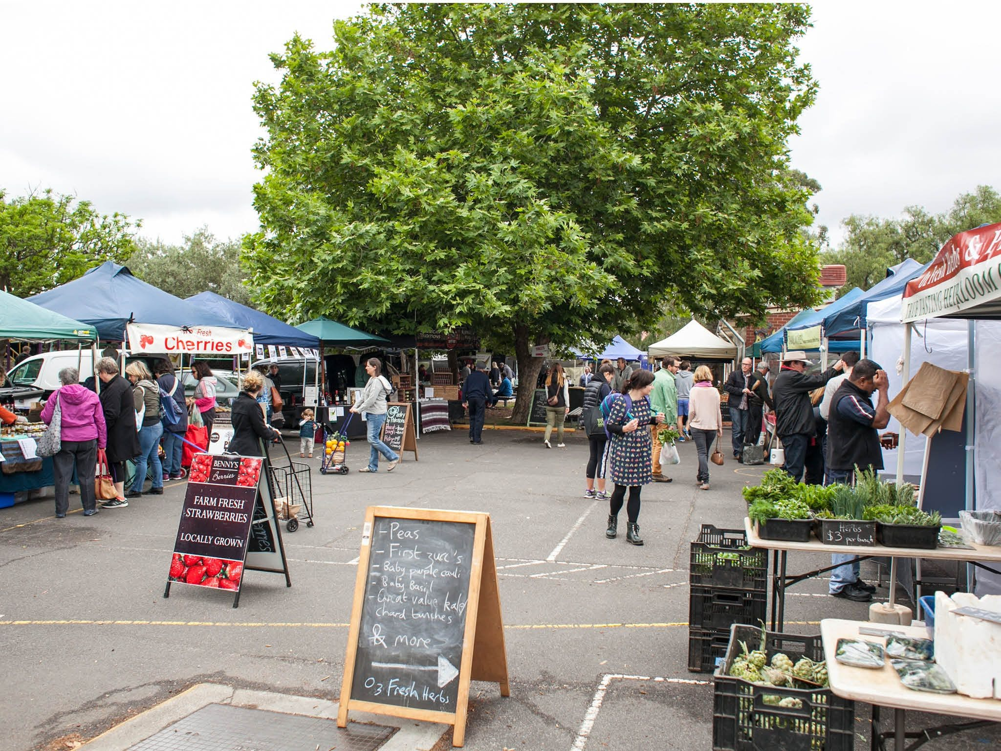 Alphington Farmers' Market - Accommodation VIC