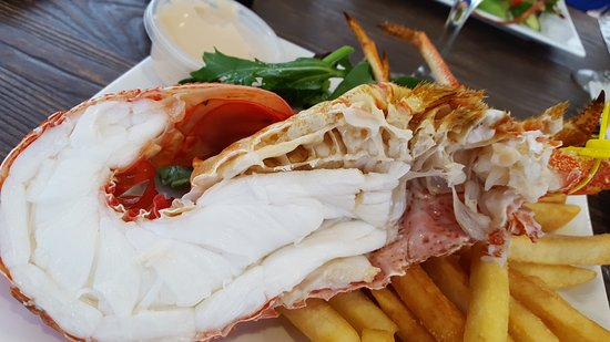 Tasmanian Gourmet Seafoods - Accommodation VIC