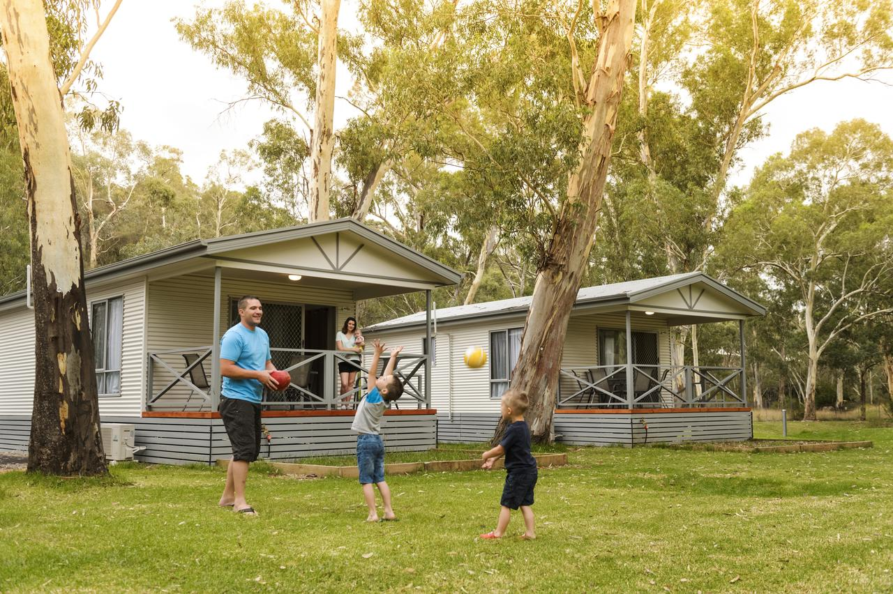 Discovery Parks  Clare - Accommodation VIC