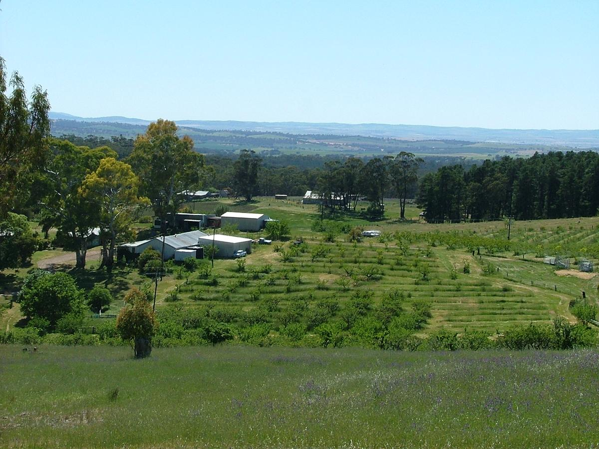 Taralee Orchards - Accommodation VIC