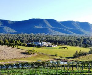 Grapevines Boutique Accommodation - Accommodation VIC